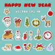 Vector set of new year and christmas symbols — Stock Vector #56311025