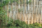 Bamboo weave — Stock Photo