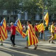 People manifesting independence during the National Day of Catalonia — Stock Photo #53331987