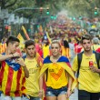 People manifesting independence during the National Day of Catalonia — Stock Photo #53332025