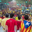 People manifesting independence during the National Day of Catalonia — Stock Photo #53332033