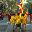 People manifesting independence during the National Day of Catalonia — Stock Photo #53332067