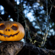 Halloween scary pumpkin in the gren tree brushwood — Stock Photo #56042317