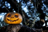 Halloween scary pumpkin in the gren tree brushwood — Stock Photo