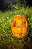 Halloween scary pumpkin in the gren grass — Stock fotografie