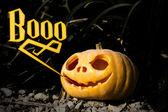 Boo Halloween scary pumpkin in the dark grass brushwood — Stock Photo