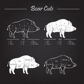 Boar meat cut diagram - elements blackboard — Stock Vector