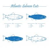 Norwegian Atlantic salmon cutting diagram — Stock Vector