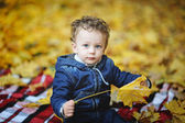Kinky baby with blue eyes sitting with yellow leaves in hand on  — Stock Photo