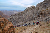 Tourists descend from the top of Mount Moses, Egypt — Stock Photo