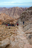 Tourists descend on the long trail from the top of Mount Moses, Egypt — Stock Photo
