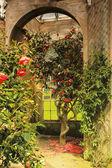 Old beautiful orangery — 图库照片