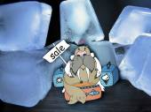 Combination of drawing and pictures - Walrus among ice floes trades — Stock Photo