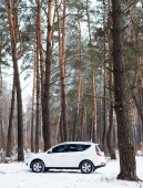 White car in the winter coniferous forest — Foto Stock