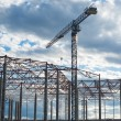 Building framework and tower crane — Stock Photo #62735731