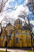 Saint Volodymyr orthodox cathedral in Kyiv, Ukraine — Stock Photo