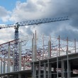 Building framework and tower crane — Stock Photo #77049521