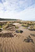 Textured sand, rocks and seawead natural coastal image — Stock Photo