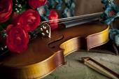 Violin and bow with flowers — Stock Photo