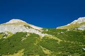 Tirol vallei — Stockfoto