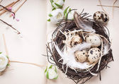 Easter eggs decoration — Stock Photo