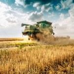 Harvester cropping grain — Stock Photo #79032700