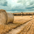 Bales of straw on cropped field — Stock Photo #79032828