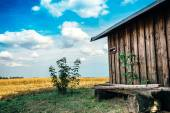 Little wooden house in field — Stock Photo
