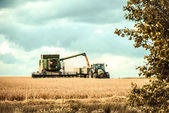 Harvester and tractor cropping grain — Stock Photo
