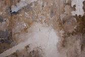 Wood textur — 图库照片