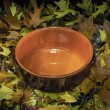 Autumnal still life composition: clay pot and colored leaves — Stock Photo #58630047