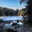Carezza lake in winter with frosty surface  — Stock Photo #61624527