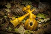 Kendama in an autumnal composition — Photo
