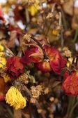 Ramo de rosas marchitas secas. — Foto de Stock