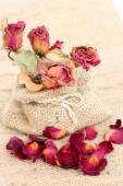 Bouquet of dried withered roses and petals over vintage backgrou — Stock Photo