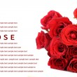 Red roses bouquet on white background, greeting card. — Stock Photo #56499993
