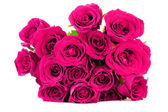 Pink roses bouquet on white background — Stock Photo
