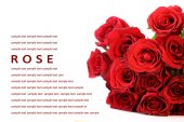 Red roses bouquet on white background, greeting card. — Stock Photo