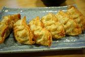 Deep fried dumpling, Gyoza, Japanese food. — Stock Photo
