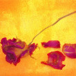 A withered rose and petals on golden grungy background. — Stock Photo #59161721