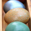 Spring celebrate, Colorful easter eggs in wooden box(Shallow dof — Stock Photo #68010301