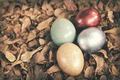 Vintage paper textures, Colorful easter eggs in pile of in weath — Stock Photo
