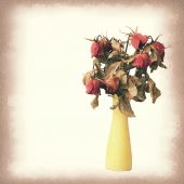 Vintage paper texture, wither rose, died rose in vase. — Stock Photo