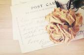 Dry rose and old postcard. Soft light vintage style image. — Foto de Stock