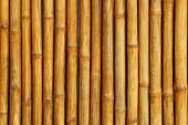 Golden bamboo fence background. — Stock Photo