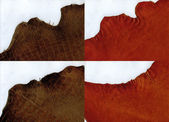 Ragged edges terracotta suede and brown crocodile leather texture — Stock Photo