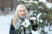 Portrait of a girl in winter forest — Stock Photo