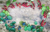 Rustic wooden board with forest berries branchlets — Stock Photo