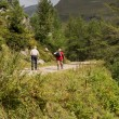 Hikers in the Alps, austria — Stock Photo #52922301