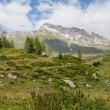 Hikers in the Alps, austria — Stock Photo #53066733